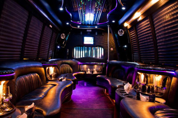 15 Person Party Bus Rental Tucson